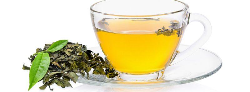 green-tea-flavonoids-journal-harley-street-emporium