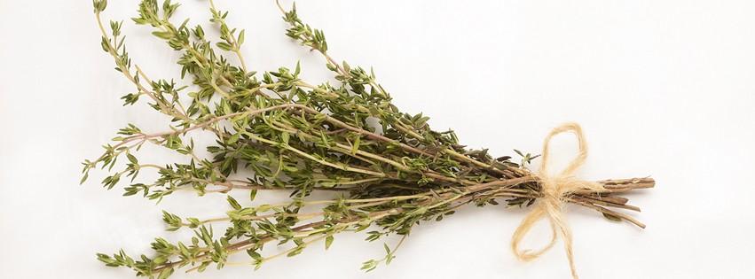 thyme-wide-flavinoid-journal-harley-street-emporium