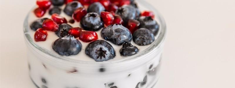 fruit-and-yoghurt-prebiotics-journal-harley-street-emporium
