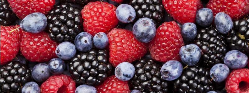 summer-fruits-berries-journal-harley-street-emporium