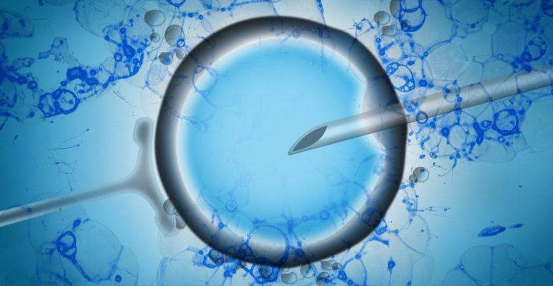 IVF-premature-menopause-harley-street-emporium